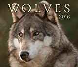 img - for Wolves 2016 book / textbook / text book