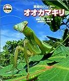 自然なぜなに?DVD図鑑6 草間のハンター オオカマキリ
