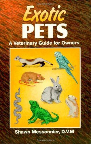 Exotic Pets: A Veterinary Guide For Owners