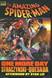 Spider-Man: One More Day