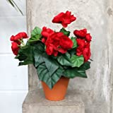 Artificial Potted Plant - Red Begonia with Foliage 30cm