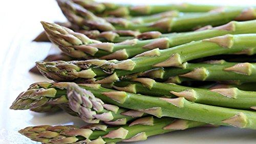 Mary Washington Asparagus 100 Seeds - Veggie