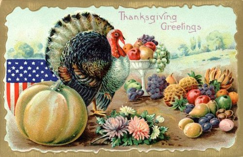Thanksgiving Greetings Postcard  a Turkey and