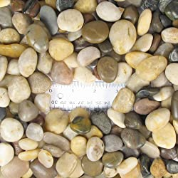 "Natural Polished Mixed Color Stones Small, total weight approximately 5 pounds, average size 0.5"" - 0.75"""