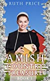 img - for An Amish Country Treasure (Amish Country Treasure Series (An Amish of Lancaster County Saga) Book 1) book / textbook / text book