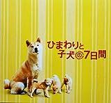ひまわりと子犬の7日間 映画パンフレット 監督 平松恵美子 キャスト 堺雅人、中谷美紀、でんでん、若林正恭、吉行和子