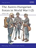 The Austro-Hungarian Forces in World War I (2): 1916-18