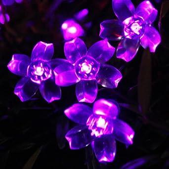InnooTech 50er LED Solar Lichterkette Außen Kirscheblumen 5M Purpur
