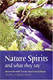 Nature Spirits And What They Say: Interviews With Verena Stael Holstein