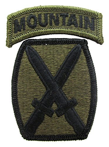 10TH Mountain Division Patch Subdued with Mountain Tab