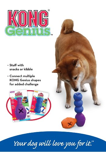Kong Genius Mike Dog Toy Extra Large Colors Vary