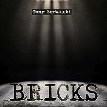 Bricks: Halfskin, Book 3 Audiobook by Tony Bertauski Narrated by David Dietz