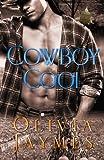 Cowboy Cool: Book 5 (Cowboy Justice Association) (Volume 5)
