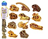 Toob includes: Carnotaurus, Velociraptor, Brachiosaurus, Oviraptor, Nigersaurus, Diplodocus, Dilophosaurus, Dracorex, Triceratops, T-rex, Parasaurolophus. Each mini figure is carefully sculpted and finely painted by hand to ensure optimum quality for years of learning fun. For added play value these collections are packaged in a reusable acetate tube.