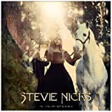 Stevie Nicks STEVIE NICKS-IN YOUR DREAMS by Nicks, Stevie (2011) Audio CD