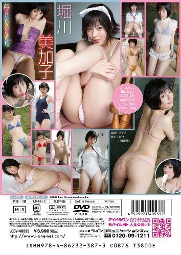 堀川美加子 好きなひとができました。 [DVD]