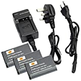DSTE® 3pcs NP-BX1 Rechargeable Li-ion Battery + Charger DC134U for Sony NP-BX1, NP-BX1/M8 and Sony Cyber-shot DSC-RX1R, DSC-RX1R/B, DSC-HX300, DSC-RX1, DSC-RX100, DSC-RX100 II, DSC-RX100 III, DSC-RX100/B, DSC-RX100M2, DSC-RX100M2/B, DSC-RX1B, DSC-WX300,