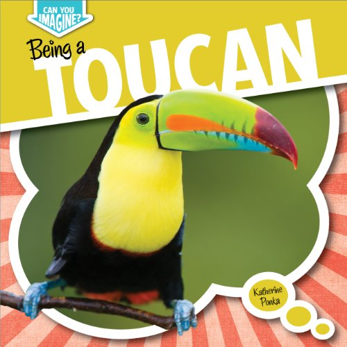 Being a Toucan (Can You Imagine?) (You Can Toucan compare prices)