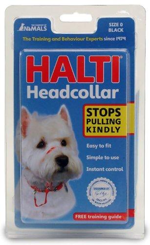 Dog Supplies Halti Head Collar