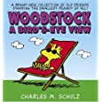 Woodstock    A Bird's-Eye View