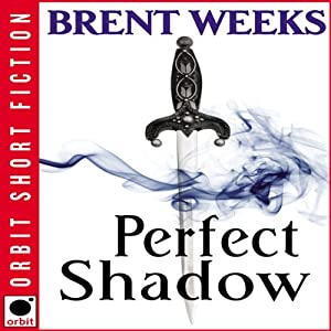 Perfect Shadow Audiobook