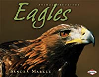 Eagles (Animal Predators)