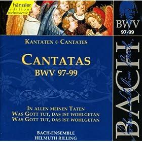 In allen meinen Taten, BWV 97: Aria: Nichts ist es spat und fruhe (Bass)