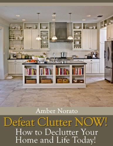 Amber Norato - Defeat Clutter NOW! How to Declutter Your Home and Life Today!