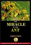Harun Yahya The Miracle in the Ant