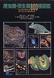 爬虫類・両生類800種図鑑
