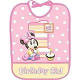 Minnie Mouse 1st Birthday Plastic Bib (1ct)