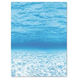 """Pacon 56525 Pacon Fadeless Designs 48"""" x 50' Boxed, Oceans"""