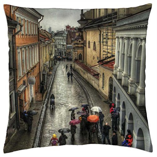 rain-on-street-in-old-vienna-austria-hdr-throw-pillow-cover-case-18