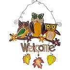 Owl Welcome Hanger