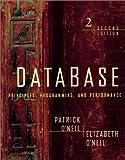 Database--principles- programming- and performance