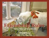 Friendship Rules