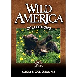Cuddly &amp; Cool Creatures Collection