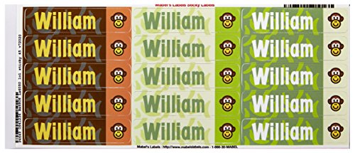Mabel'S Labels 40845097 Peel And Stick Personalized Labels With The Name William And Monkey Icon, 45-Count front-833518