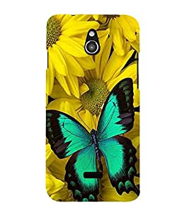 Vizagbeats butterfly on yellow chameli flowers Back Case Cover for Infocus M2