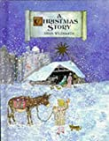 Brian Wildsmith A Christmas Story (Picture book)