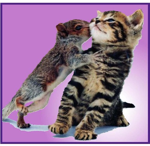 Tiger Striped Kitten & Baby Squirrel - Etched Vinyl Stained Glass Film, Static Cling Window Decal