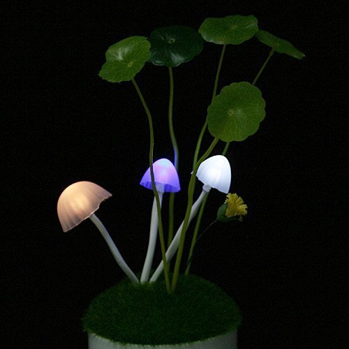 Timesino Cool Fire Time Sino Cool Fire Firefly Led Light Sensor Mushroom Lamp