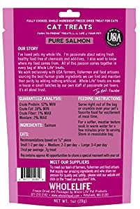 Whole Life Pet Single Ingredient USA Freeze Dried Salmon Filet Treats for Cats, 1-Ounce