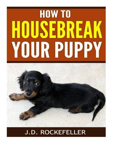 How to Housebreak Your Puppy