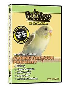 PARAKEET DVD! + Train your Bird to Talk Bonus Video