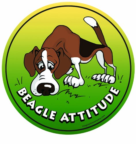 Imagine This 4-3/4-Inch by 4-3/4-Inch Car Magnet Dog Attitude, Beagle