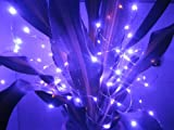 12V DC 33Ft Copper Wire LED String Light ,Decorate for Christmas,Wedding ,Halloween, - Includes Power Adapter, (purple)