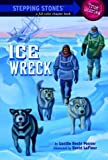 img - for Ice Wreck (A Stepping Stone Book) book / textbook / text book