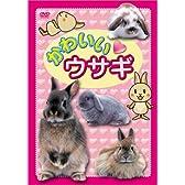 かわいい ウサギ [DVD]