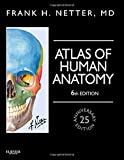 img - for Atlas of Human Anatomy, Professional Edition: including NetterReference.com Access with Full Downloadable Image Bank, 6e (Netter Basic Science) book / textbook / text book